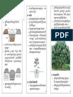 Longan Plantation_GIZ-05 May 09