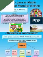 FMAM_I