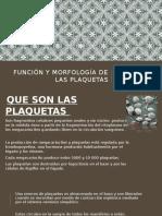 Función y Morfología de Las Plaquetas