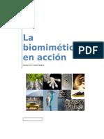 La Biomimética en Acción