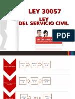Ley Servir1