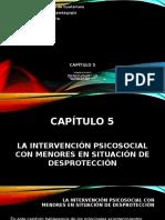 Presentación Capitulo 5