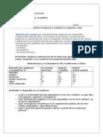 GUIA PRIMERO MEDIO 2.docx