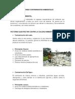 Factores Contaminantes Ambientales Trabajo