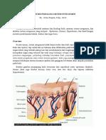 Anatomi Fisiologi Sistem Integumen Bu Dewi