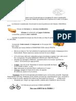 2016 Habits eco ambientals vilafranca
