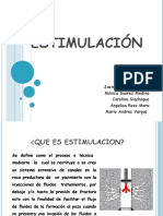estimulacion-120528154726-phpapp02