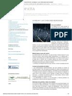 La Neuropatia _ La Mielina y Las Conexiones Neuronales