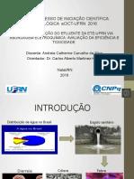 Vídeo CIC-2016-andreia.pptx