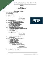 Estudio Geologico y Geotectonico Tintiniquiato