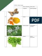 Daftar-Tanaman-Obat-di-SMAN-1-Tanah-Grogot