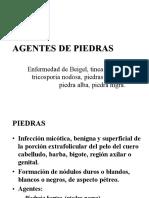 8-PIEDRAS.pptx