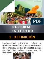 Diversidad Cultural