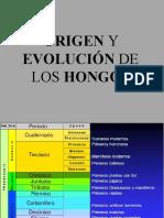 Evolución Hongos