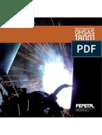 guia_para_la_implantacion_de_norma_ohsas_18_001_en_el_sector_metal.pdf