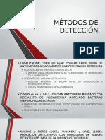 Métodos de Detección