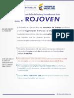 PDF Ley Projoven (1)