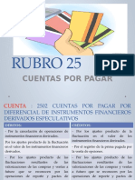 Rubro 25 Plan c. Financiero