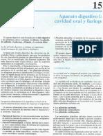 Cap 15-Aparato Digestivo I; Cavidad Oral y Faringe