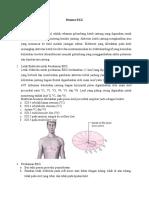 Resume EKG