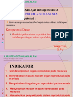Sistem Reproduksi Pd Manusia