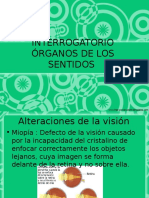 13. int. org. sentidos.ppt