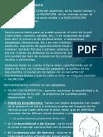 EXPLORACIÓN DE RENAL.pptx