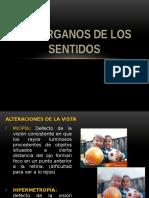 INT. ORG. DE LOS SENTIDOS.pptx