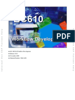 Workflow_Development.pdf