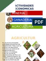 Cuzco Actividad Economica