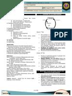 2.7 [BIOCHEMISTRY] Gluconeogenesis - Better Pictures
