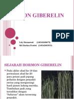 HORMON GIBERELIN.ppt