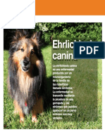 AV_25_Ehrlichiosis_canina.pdf