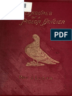 The Pleasures of a Pigeon Fancier By Rev. Jr. Lucas