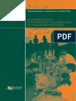 La Adolescencia sus derechos y sus practicas de sexualidad saludable. CONDERS. 2008
