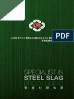 1a. Lion Titco Company Profile