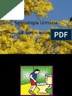 2)SEMIOLOGIA URINARIA