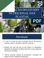 Avaliação Nutricional Das Plantas