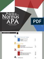 APA v6.pdf