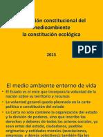 Proteccion Constitucional Del Ma 2016