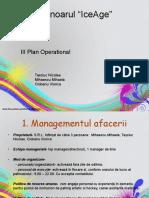 management servicii