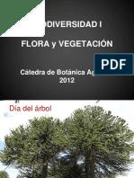 Clase 1 Sistemática Clasificaciones Nomenclatura Parte 1 Biodiversidad I