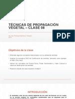 TPV - CST Clase 08 Semilas Valor Cultural y Cálculos - Rodrigo Espinoza v - 2016