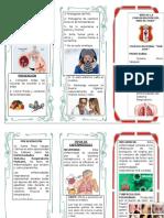 Enfermedades Del Sistema Respiratorio Humano