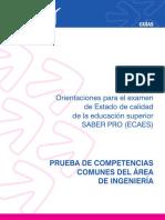 Guia_ingenieria2011.pdf