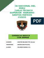 190263345-Gimnasia-Basica.docx