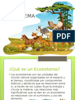 4 ecosistema