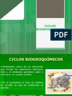 7 ciclos biogeoquimicos