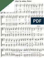 Pan-la Tine Isuse.pdf