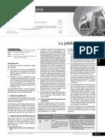 LA JUBILACION MINERA.pdf